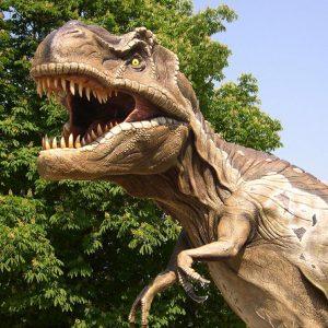 Dinosauri e Preistoria